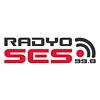 radyo-ses