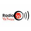 radio-white